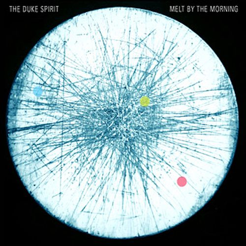 Melt By The Morning by The Duke Spirit