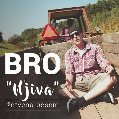 Njiva (Žetvena Pesem) by Bro