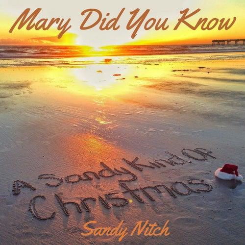 Mary Did You Know by Sandy Nitch