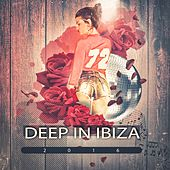 Deep in Ibiza 2016 (Dive in a Deep House Journey) by Various Artists