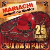 Bailando Sin Parar by Mariachi Juvenil de Mexico