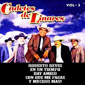 Vol. 3 by Los Cadetes De Linares