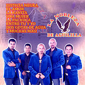 Play & Download 13 Temas by La Nobleza De Aguililla | Napster