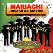 Fiesta De Exitos Que Siga La Fiesta by Mariachi Juvenil de Mexico