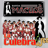 Play & Download La Culebra by Banda Machos | Napster