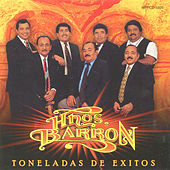 Toneladas De Exitos by Los Hermanos Barron