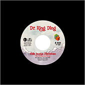 Viele bunte Päckchen by Dr. Ring-Ding