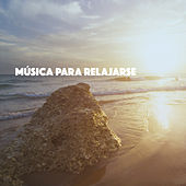 Música Para Relajarse de Various Artists