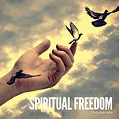 Spiritual Freedom, Vol. 1 (Smooth Meditation Music) by Various Artists