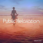 Public Relaxation, Vol. 1 (Finest Chill Out Moods) by Various Artists