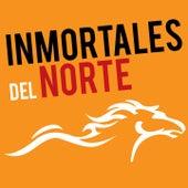 Inmortales del Norte, Vol. 1 by Various Artists