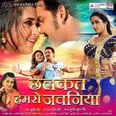 Chhalakata Hamro Jawaniya de Various Artists