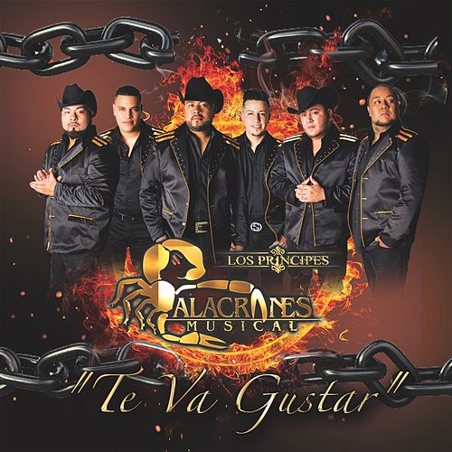 Play & Download Te Va Gustar by Alacranes Musical | Napster