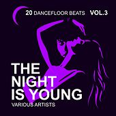The Night Is Young, Vol. 3 (20 Dancefloor Beats) by Various Artists
