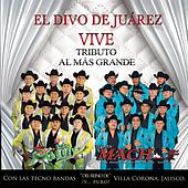 Play & Download Juan Gabriel Vive - Tributo al Más Grande by Various Artists | Napster