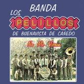 Play & Download No Me Vieron by Banda Pelillos | Napster