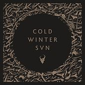 Play & Download Cold Winter Sun by Demon Hunter | Napster