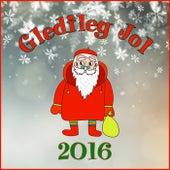 Gledileg Jol 2016 by Various Artists