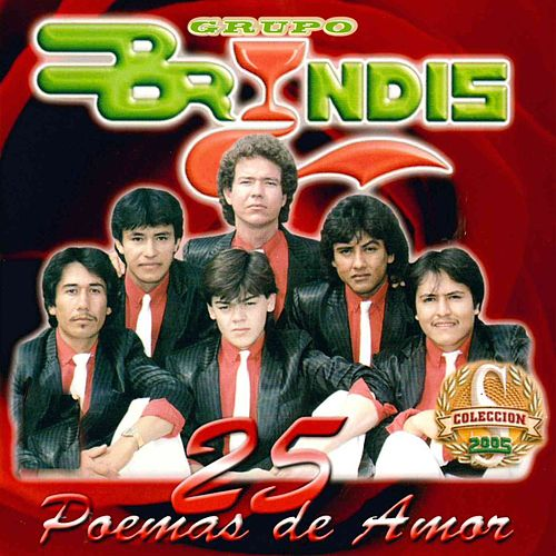 Play & Download 25 Poemas de Amor by Grupo Bryndis | Napster