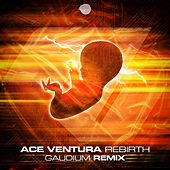 Rebirth (Gaudium Remix) by Ace Ventura