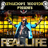Real Life by Elephant Man