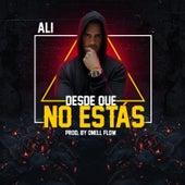 Desde Que No Estas by Ali