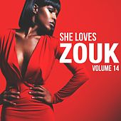 She Loves Zouk, Vol. 14 by Various Artists