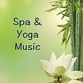 Spa & Yoga Music by S.P.A