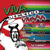 Play & Download Viva Mexico 15 Temas by Various Artists | Napster