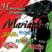 Play & Download Homenaje Grupero Al Mariachi by Various Artists | Napster