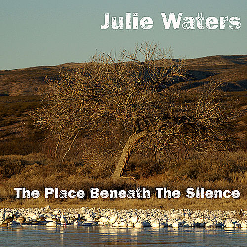 Play & Download The Place Beneath the Silence by Julie Waters | Napster
