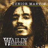 Wailin' for Love by Junior Marvin