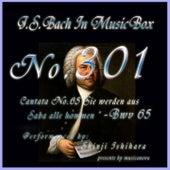 Cantata No. 65, ''Sie werden aus Saba alle kommen'', BWV 65 by Shinji Ishihara