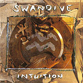 Intuition by Swan Dive