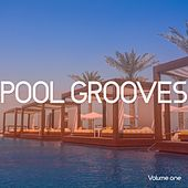 Pool Grooves, Vol. 1 (Sunny Chill House & Lounge Grooves) by Various Artists