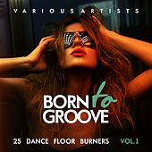 Born To Groove (25 Dance Floor Burners), Vol. 1 by Various Artists