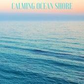 Calming Ocean Floor by Ocean Sounds