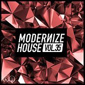 Modernize House, Vol. 35 by Various Artists