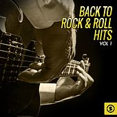 Back to Rock & Roll Hits, Vol. 1 by Various Artists