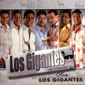 Son los Gigantes by Los Gigantes del Vallenato