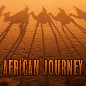 African Journey by Various Artists