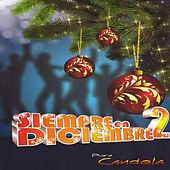 Play & Download Siempre en Diciembre 2 by Various Artists | Napster