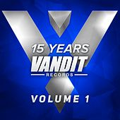 15 Years of VANDIT Records (The Remixes, Vol. 1) by Various Artists