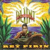 Blunt Paradise by Rey Pirin