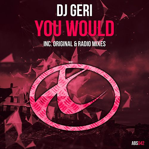 You Would by DJ Geri