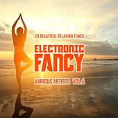 Electronic Fancy (20 Beautiful Relaxing Tunes), Vol. 4 by Various Artists