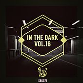 Play & Download In the Dark, Vol. 16 by Various Artists | Napster