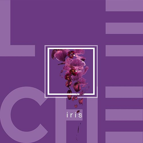 Play & Download Iris by Leche | Napster