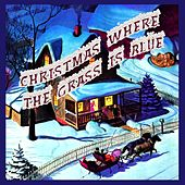Play & Download Christmas Where the Grass Is Blue by Various Artists | Napster