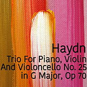 Play & Download Haydn Trio For Piano, Violin and Violoncello No. 25 in G Major, Op 70 by The St Petra Russian Symphony Orchestra | Napster